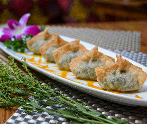 A6.	Soy Cheese Wontons